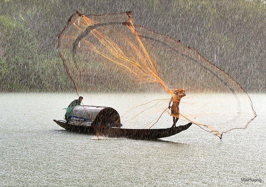 кастинговая рыболовная сеть это